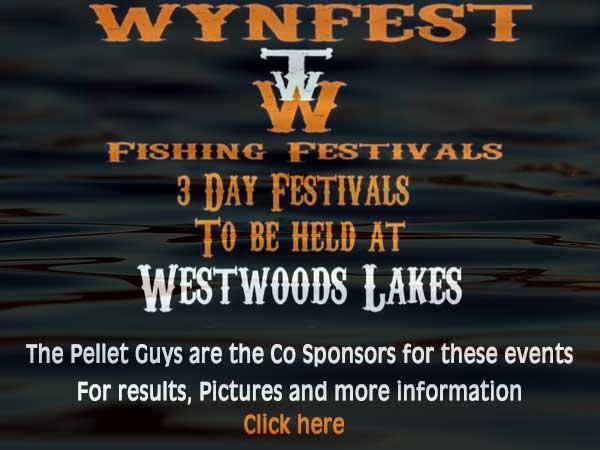 wynfest festival banner